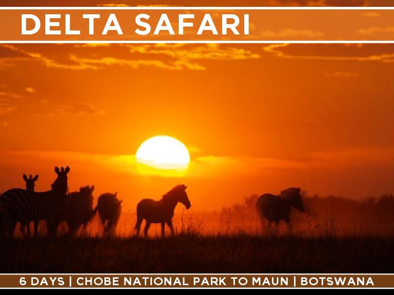 Offroad Camper Safaris 6 Day Safari in Botswana