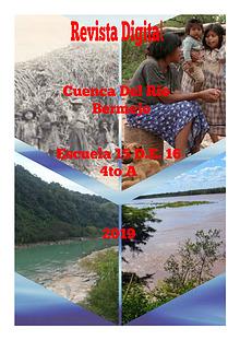 Cuenca del Rio Bermejo