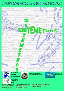 ACTUALIDAD A SIETEMETROS EL BALONMANO A SIETEMETROS