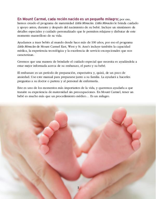 Guía para Parto y Embarazo