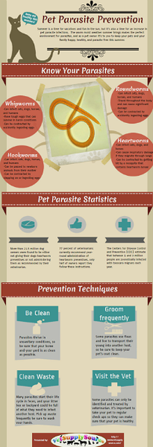Pet Parasite Prevention