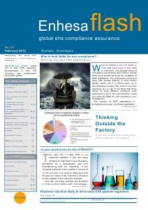 Enhesa Flash 63 February 2012 Issue