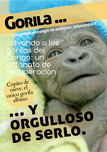 Los Gorilas ...