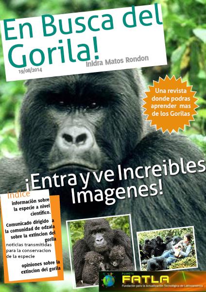 En Busca del Gorila Agosto 2014