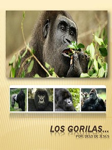 Los GoRilAS