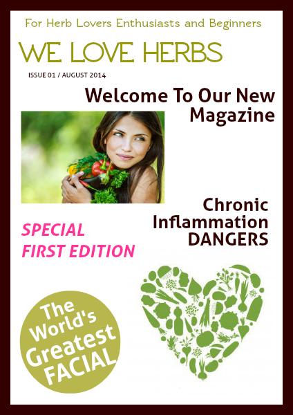 We LOVE Herbs August 2014 - Issue 1