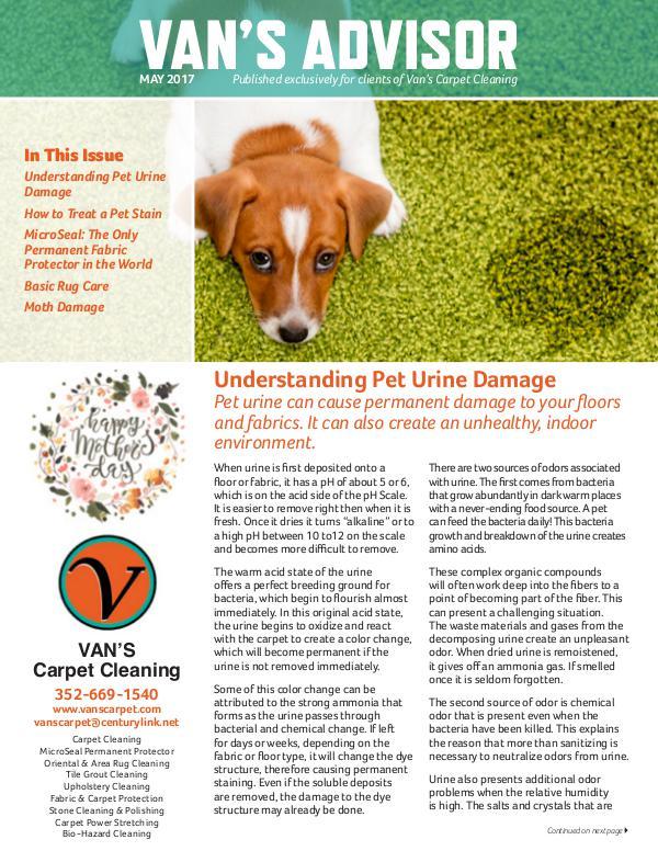 Carpet Protector For Dog Urine Carpet Vidalondon