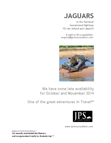 JPS Luxury Safaris JPS Luxury safaris Panatal Safari