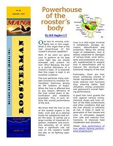 Roosterman
