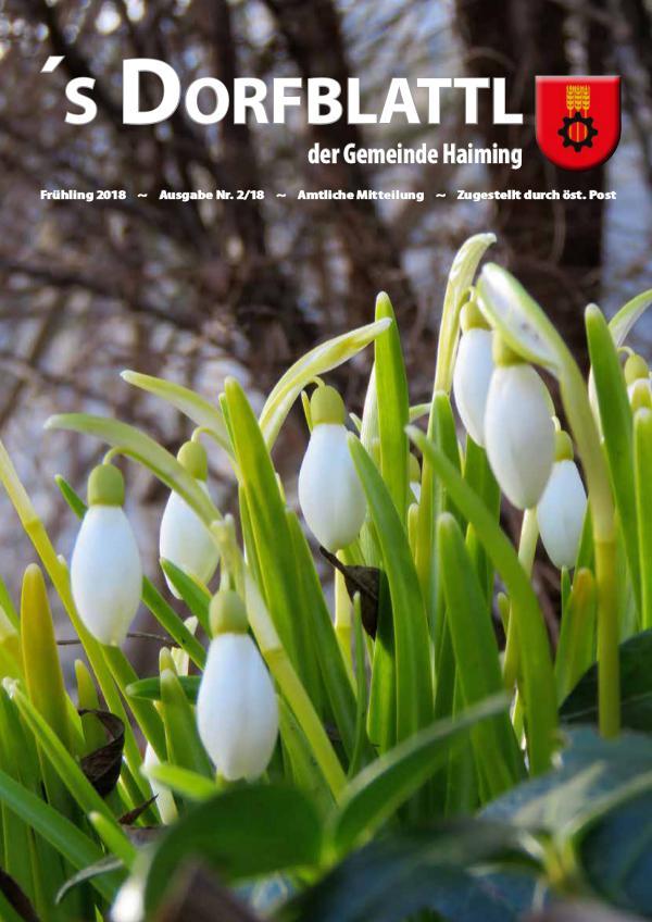 Dorfblattl Haiming Frühjahr 2018 - 02/18