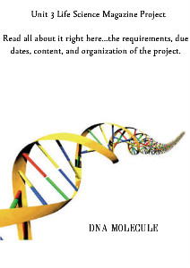 DNA Unit Science Project