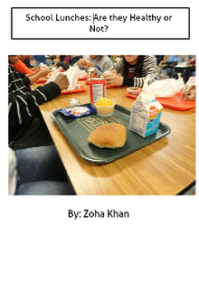School Lunches, Are They Good or Not?