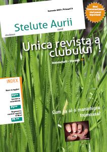 Revista SteluteAurii Ianuarie 2013 - Volumul 2