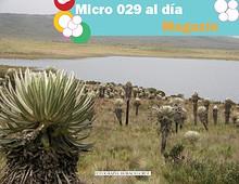 MIcro 029 al dia Magazin marzo