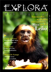 Explora Web Magazine Ano II Volume IV