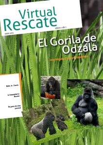 VirtualRescate (March. 2013)