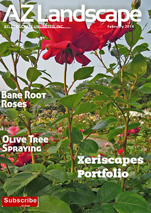 Xeriscape Newsletter