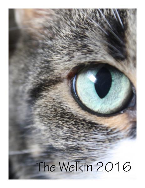 The Welkin 2016