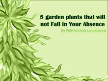 5 garden plants that will not Fall in Your Absence