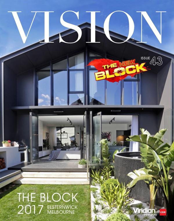 VISION Issue 43