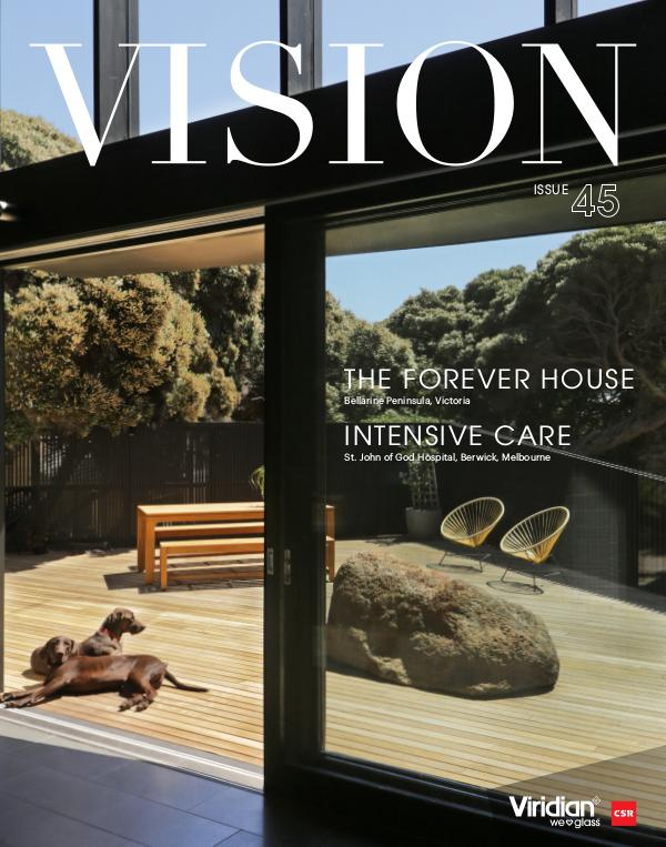 VISION Issue 45