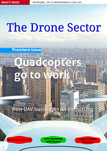 The Drone Sector