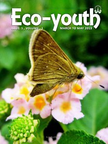 Eco-Youth (Sfe. magazine)