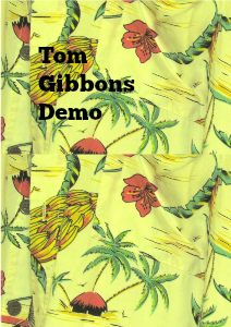 Tom Gibbons second try Vol 1 Aug. 2013