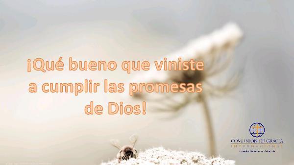 Tutorial Bíblico ¡Qué bueno que viniste a cumplir promesas de Dios!