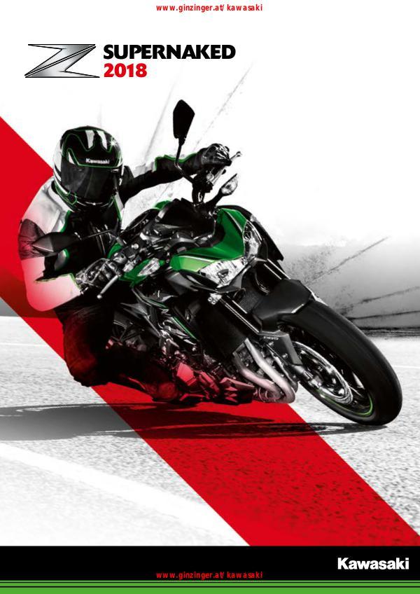 Kawasaki Kataloge Kawasaki Supernaked 2018