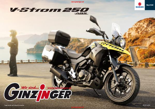 Suzuki Kataloge Suzuki Adventure V-Strom 250