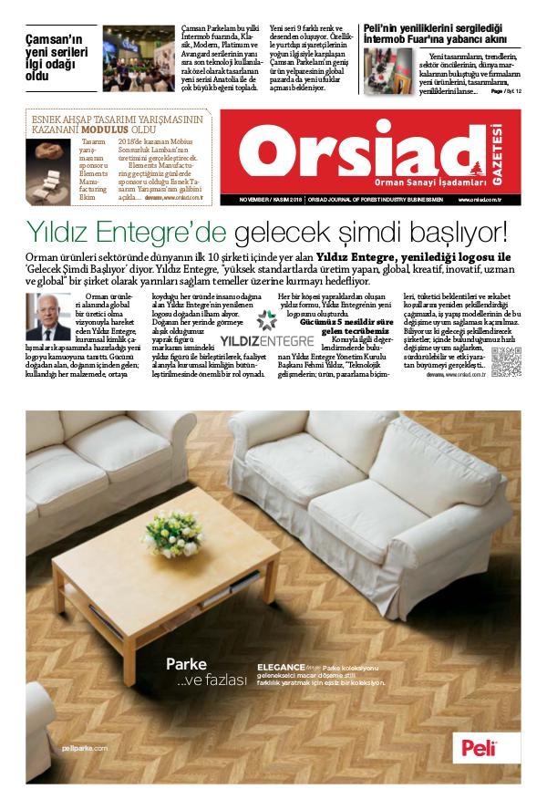 Orsiad Gazetesi Sayı 77 - Kasım 2018