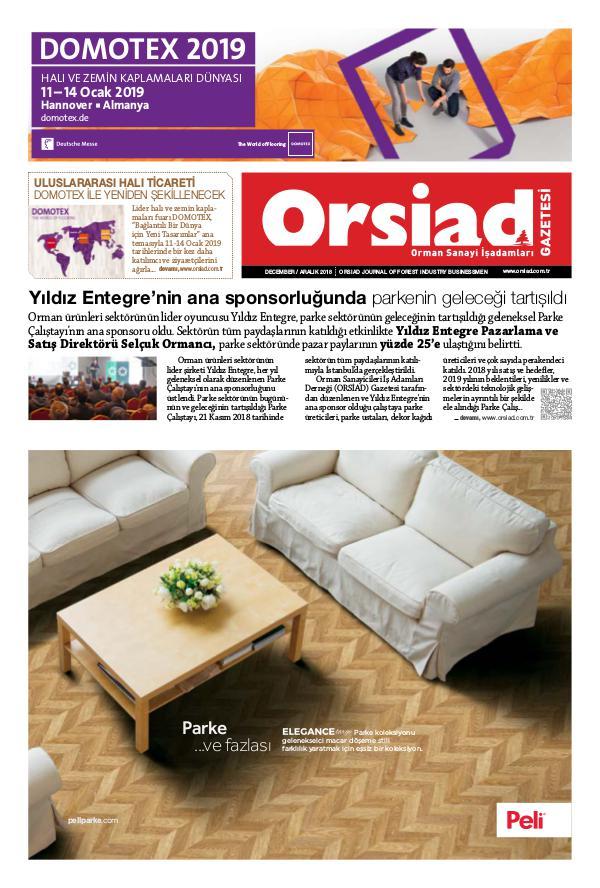 Orsiad Gazetesi Sayı 78 - Aralık 2018