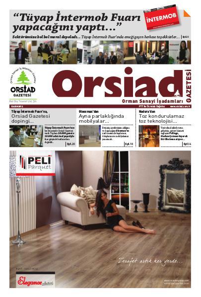 Orsiad Gazetesi Sayı 5 - Kasım 2012