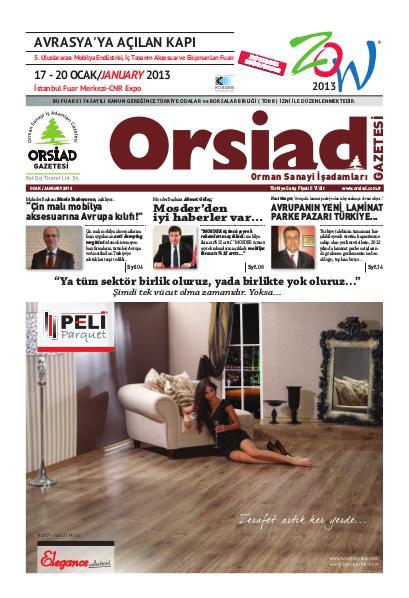 Orsiad Gazetesi Sayı 7 - Ocak 2013