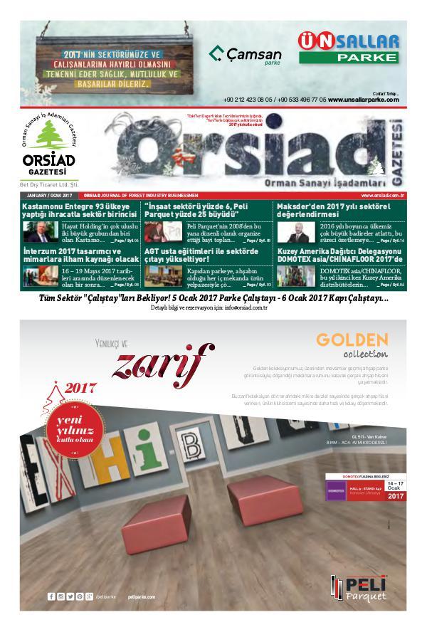 Orsiad Gazetesi Sayı 55 - Ocak 2017