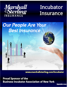 Business Incubator Insurance Vol 1 (2013, September)