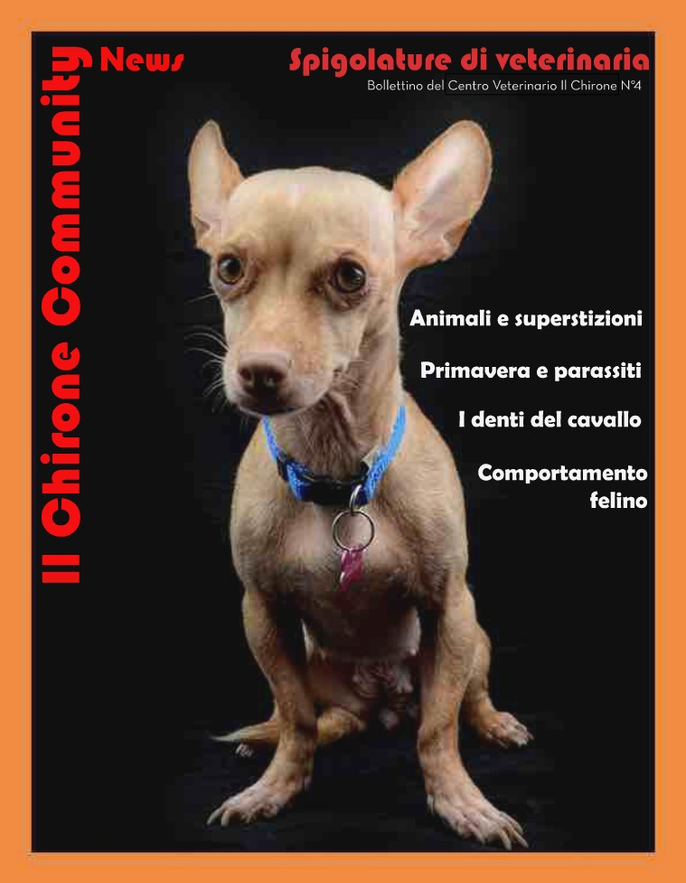 Il Chirone Community News Bollettino 4