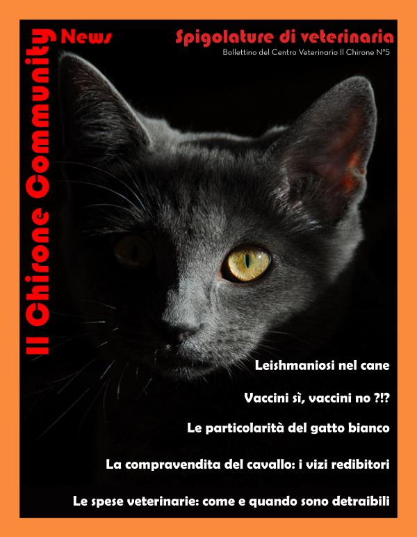 Il Chirone Community News Bollettino 5