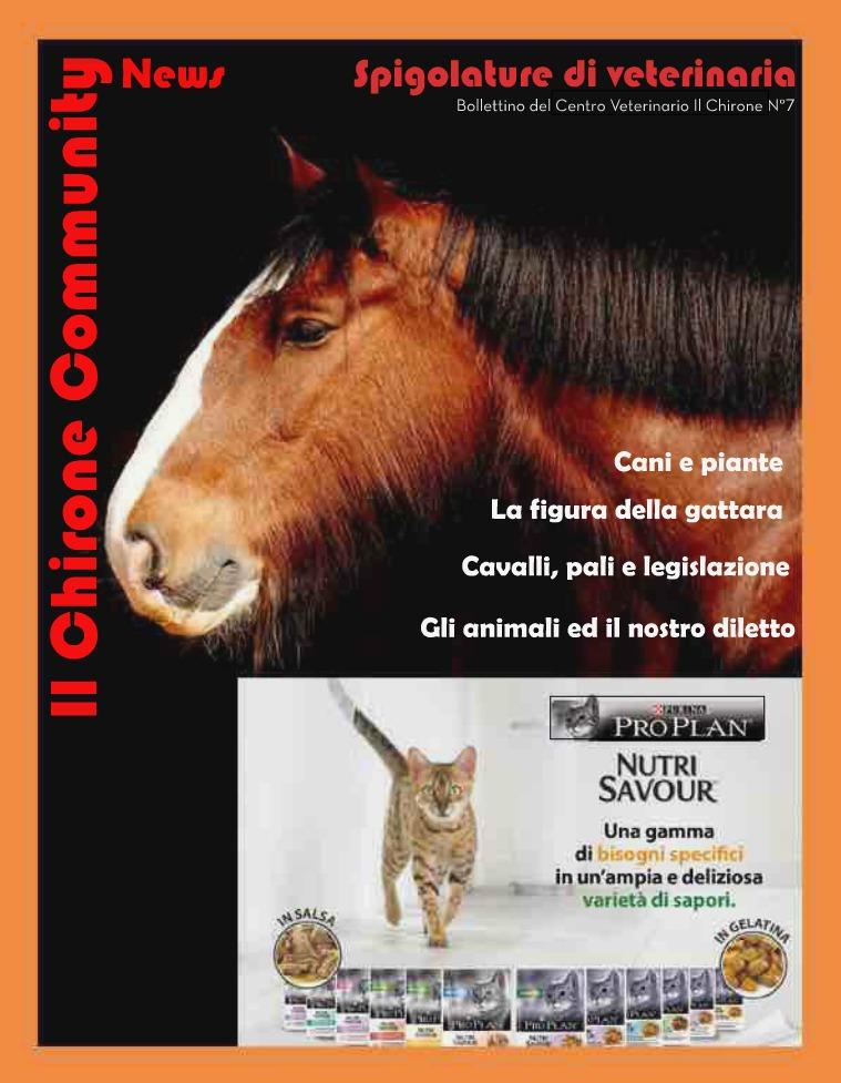 Il Chirone Community News Bollettino 7