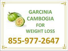 Garcinia cambogia lose weight | GarciniaCambogiaOnlineStore