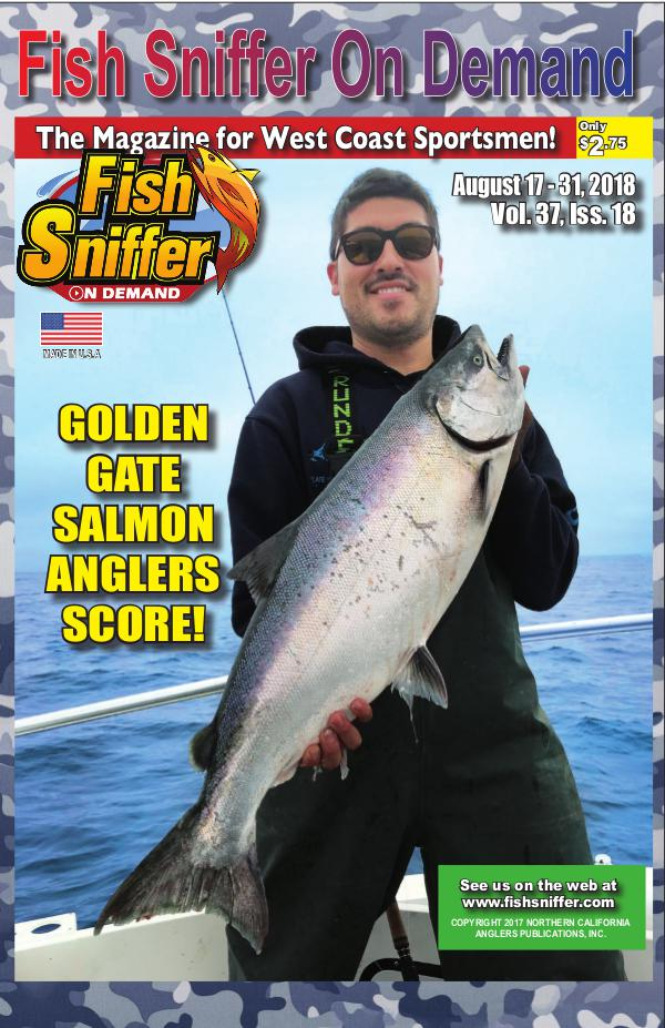 Issue 3718 Aug 17-31