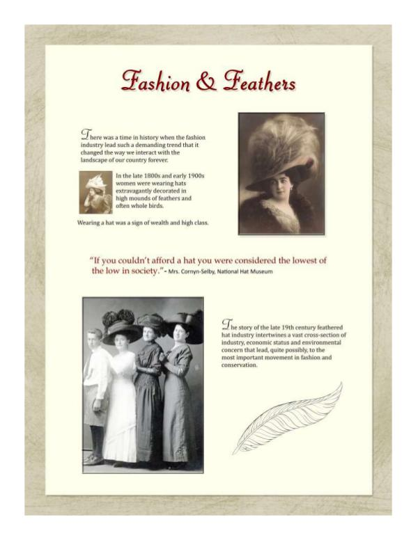 Bowman's Hats & Feathers Display Hats and Feathers PDF