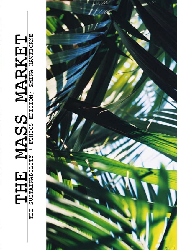 THE MASS MARKET ; SUSTAINABILITY AND ETHICS EDITION 2016 1