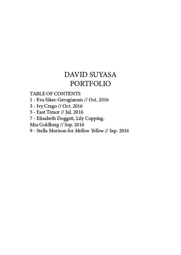 David Suyasa Portfolio #1