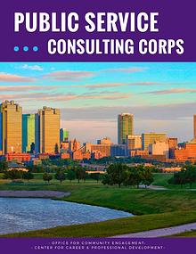Public Service Consulting Corps 2018-2019