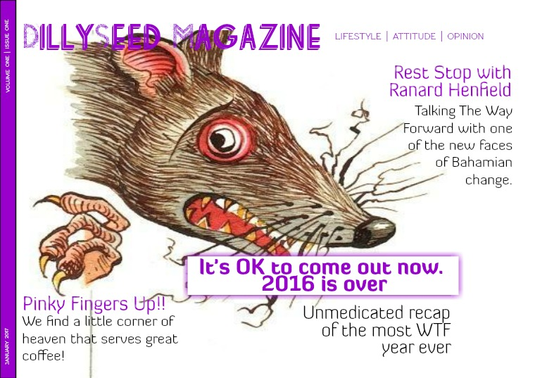 DillySeed Magazine End of Year Review