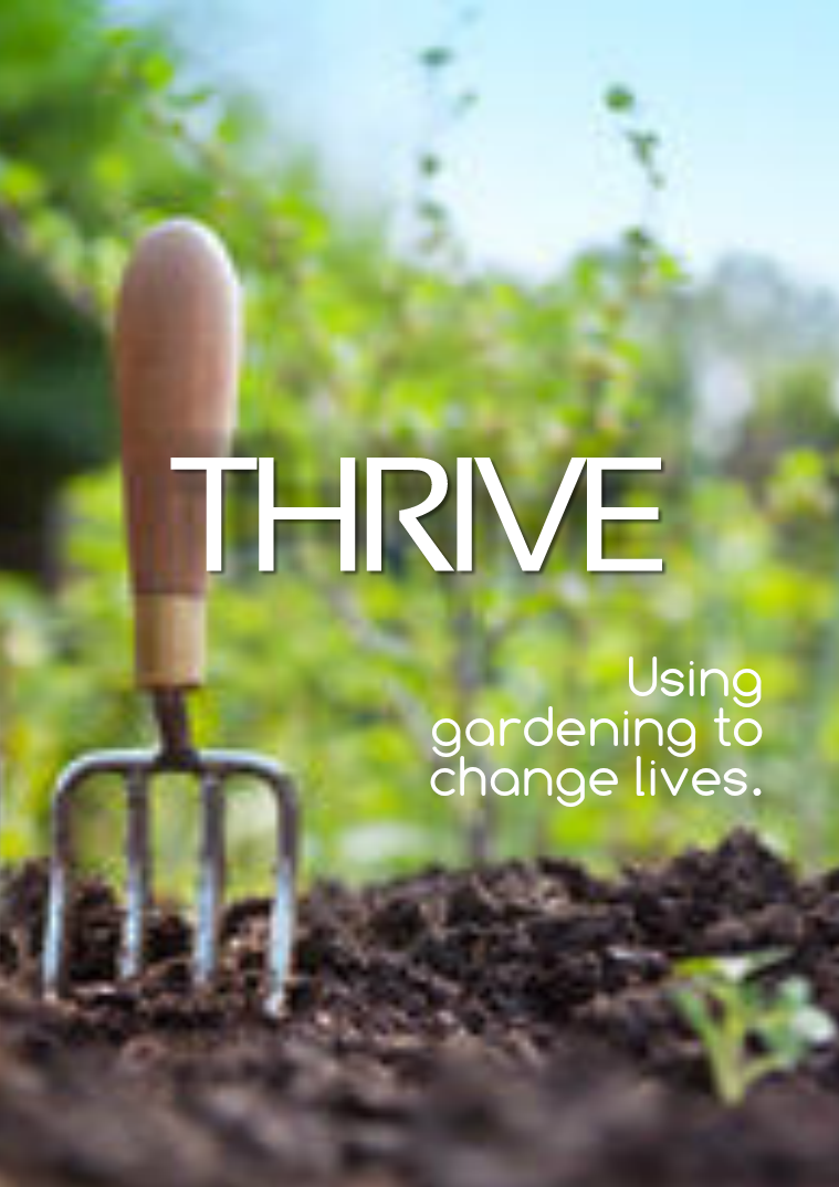 THRIVE The Magazine