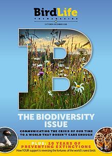 BirdLife: The Magazine