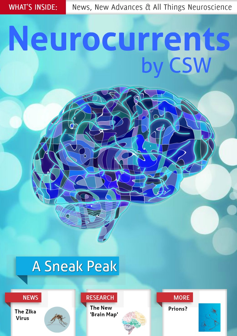 Neurocurrents by CSW 2017
